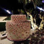Casale 1890 - Le torte