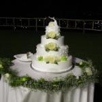 Casale 1890 - Le torte nuziali